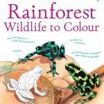 rainforest-wildlife-to-colour